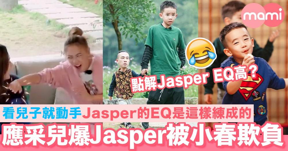 應采兒爆Jasper從小被陳小春欺負 看兒子就動手 Jasper的EQ是這樣練成的!