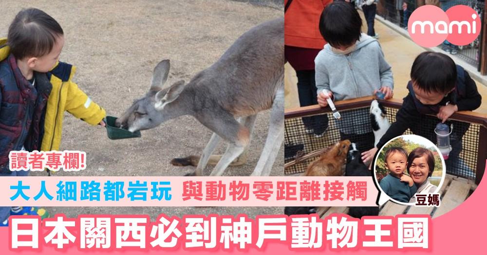 【大人細路都岩玩 與動物零距離接觸 日本關西必到神戶動物王國】
