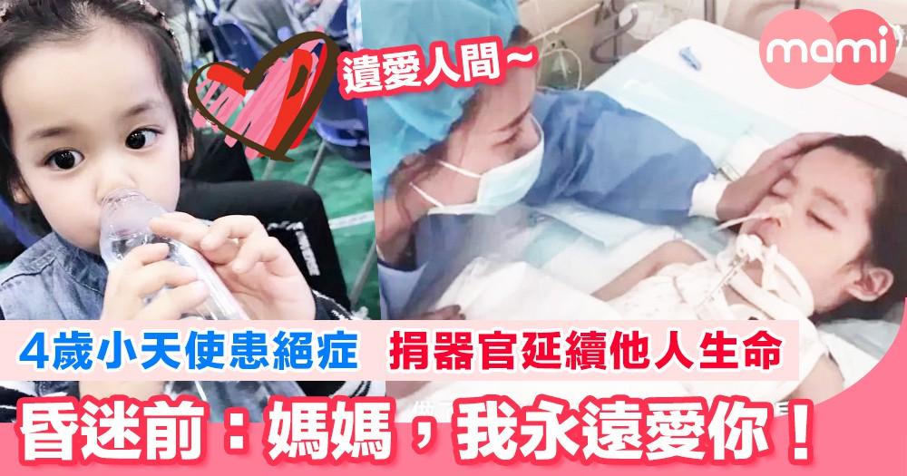 4歲小天使患絕症 捐器官延續他人生命     昏迷前:「媽媽,我永遠愛你!」   與媽媽「勾手指尾」 捐器官助人延續他人生命